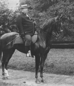 Horses in History: Mr. President, tear down these stables!