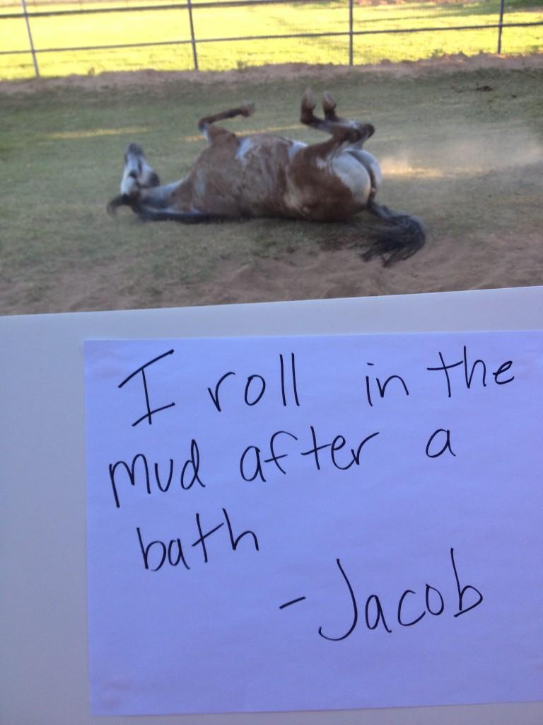 shame jacob bath