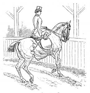 Horsemanship_for_Women_086