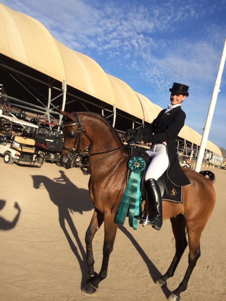Show results arabian scottsdale Show Results