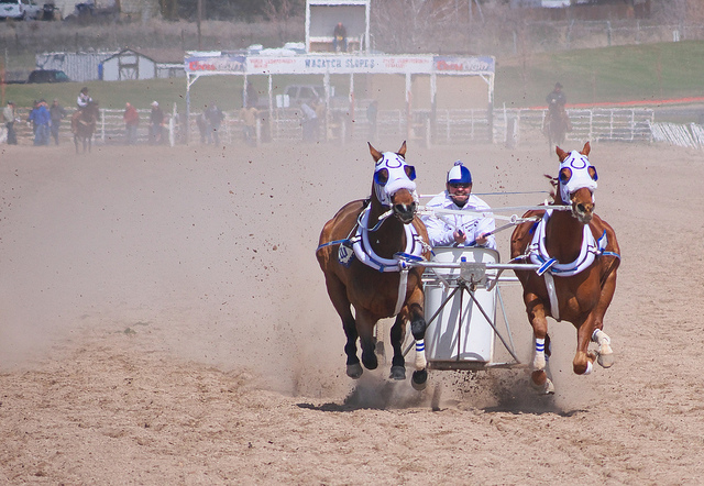 The World S Oldest Horse Sport Lives On In The Rockies Horse Nation