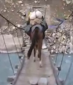 Brave Horses Conquer Rocks, Bridge of Death and Flappy Flags of Doom