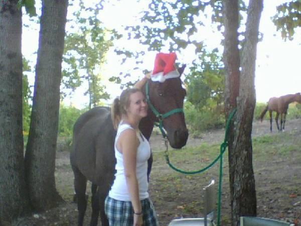 Leslie brakes the christmas decoration - 1 6