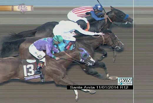 Poll Eclipse Awards For Horse Of The Year A Photo Finish
