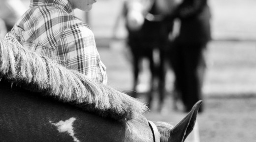 Let's Discuss: OTTBs Now Allowed at Quarter Horse Congress