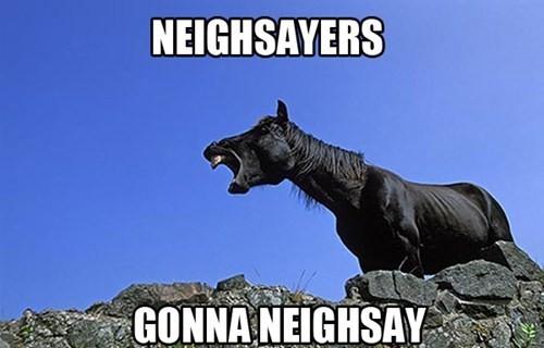 neighsayers