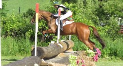 5 Misconceptions About Horseback Riders