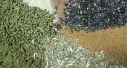 What's in Your Horse's Feed, Really?