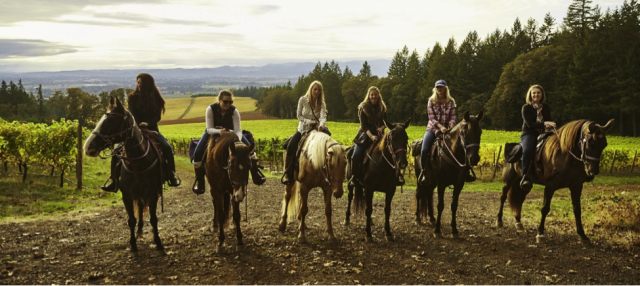 Horses Friends Amp Wine Exploring The Willamette Valley In