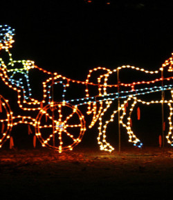 Why Horse People Should Theoretically Be Awesome at Christmas Lights