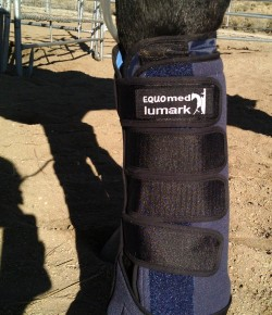 Product Review: Equomed Lumark Tendon Compression Boots