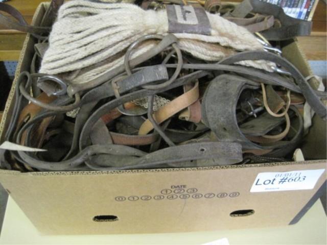 box of horse tack