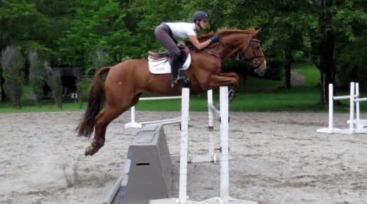 4 Things We Do For Our Horses That We Don't Do For Ourselves