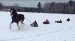 Tuesday Video: One-Horse Open… Inner Tube?