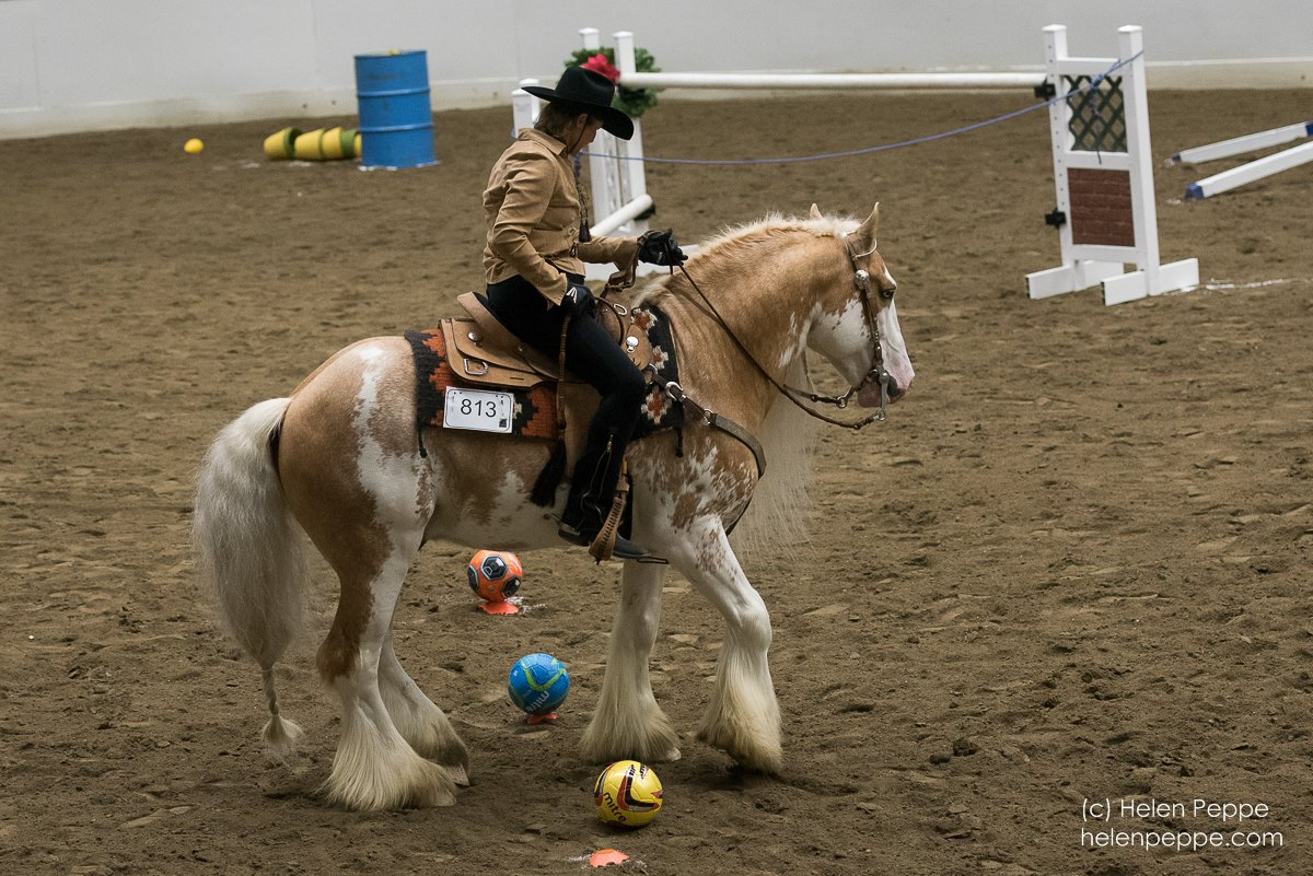 Jack performing a sidepass at the Versatile Horse and Rider Competition at the 2015 Equine Affaire. Photo courtesy of Dungarvan Feather.