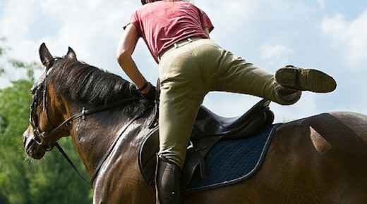 Equine Law: Considerations for Lease Agreements