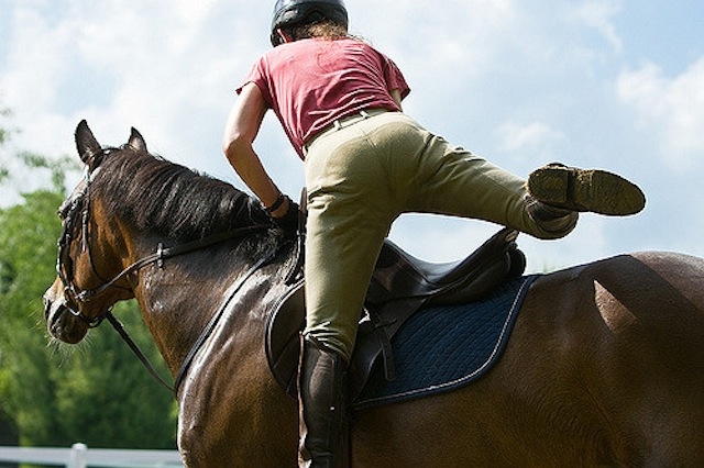 Tbt Equine Law Considerations For Lease Agreements Horse