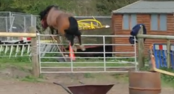 Thursday Video: Free-Jumping Pony is an Overachiever
