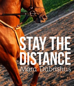 Book Review: 'Stay the Distance'