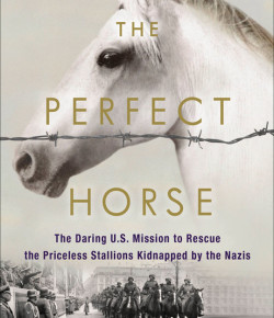 Book Review: 'The Perfect Horse'
