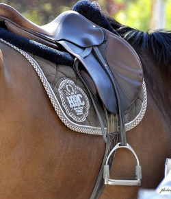 Understanding Saddle Fit, Part I: An Overview
