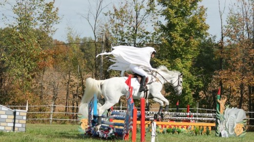 6 Fantasy Costume Ideas for Your Horse (Plus Our Contest!), Pres. by World Equestrian Brands