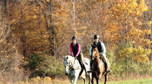 The 131st Genesee Valley Hunt Point-to-Point