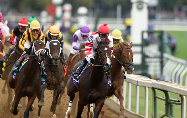 An Everyday Racing Fan S Picks Breeders Cup 2016 Day 1
