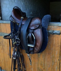 Understanding Saddle Fit, Part III: Is It a Fit?