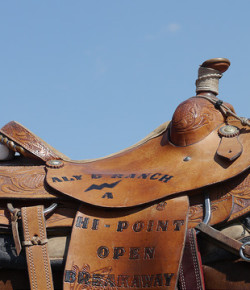 Understanding Saddle Fit, Part IV: Confounding Variables