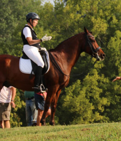 WARHorses: Grand Prix Gold Medalist 'Dunn' It Her Way