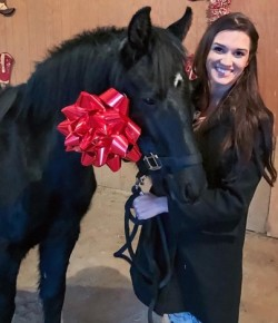 Tuesday Video: Adorable Christmas Pony Surprise