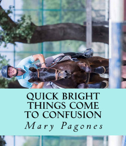 Book Review: 'Quick Bright Things Come to Confusion'
