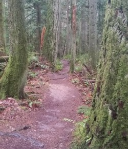 5 Things Long Distance Trail Running Has Taught Me About Riding