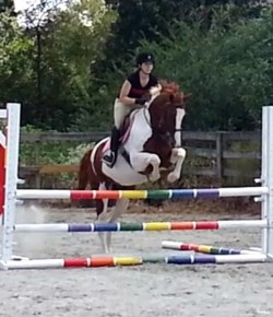 Lessons Learned: Schooling Shows
