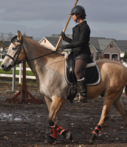 Using Dressage For Its Original Purpose: Mounted Medieval Weaponry