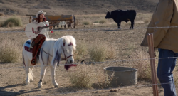 Diet Dr. Pepper Ad Brings Pony Fantasies To Life