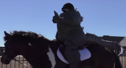 Godzilla: Friend of Horses