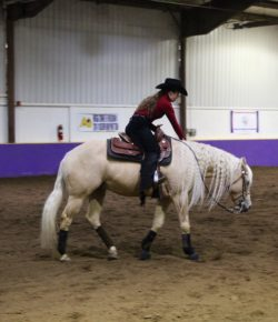 The Academic Equestrian: 5 Challenges of Being a Short Equestrian