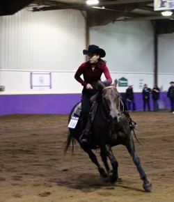 The Academic Equestrian: Ring Presence