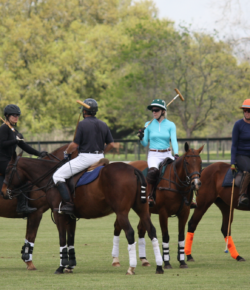 Clinic Report: Polo with Adam Snow