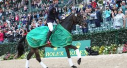 What's New For Rolex 2017