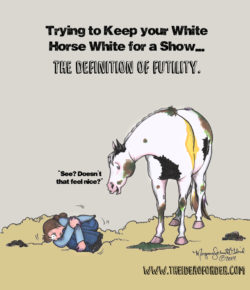 The Idea of Order: White Horse Problems
