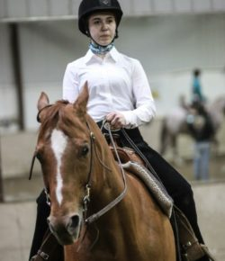 The Academic Equestrian: Game Face