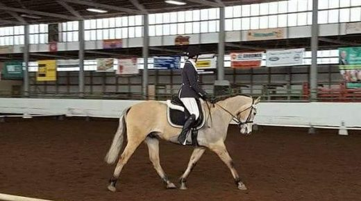 4 Ways Jumping My Dressage Horse Has Made Him (& Me) Better… At Dressage