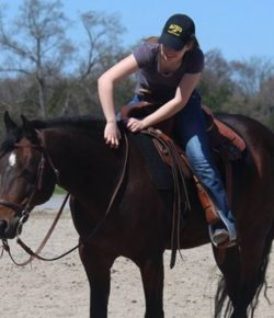 The Academic Eq: The Horses That Made Me
