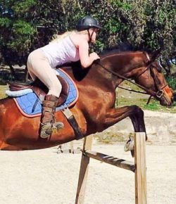 Retired Racehorse Project Showcase: For Better or For Worse, Part II