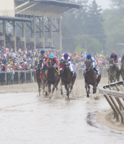 2019 Preakness Stakes Field Preview & Poll