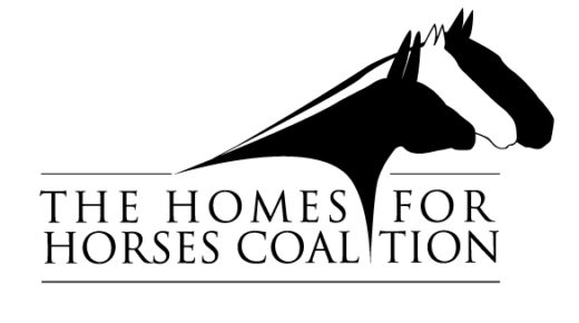 Standing Ovation by Ovation Riding: The Homes For Horses Coalition