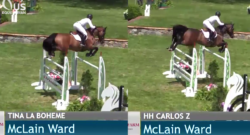SpectraVET Perf. of the Week: McLain vs. McLain